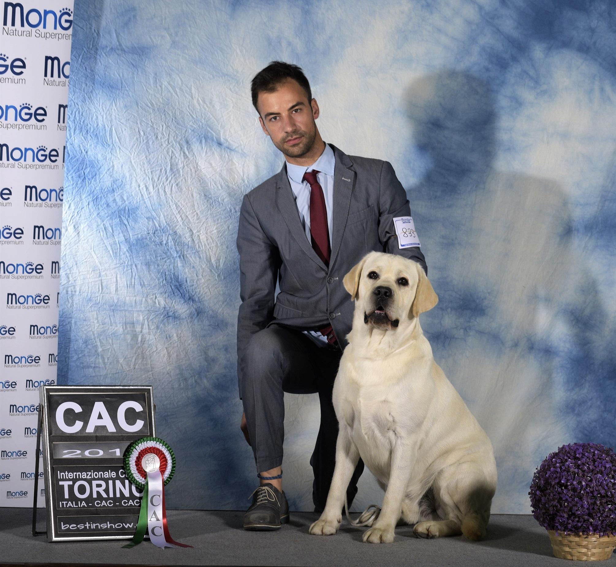 Esposizione Internazionale di Torino – Mostra Speciale Labrador – 7 Luglio 2019