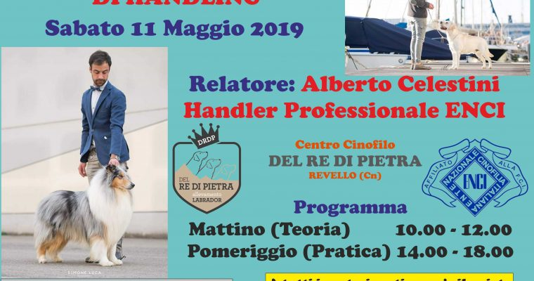 STAGE DI HANDLING