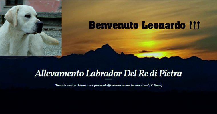 BENVENUTO LEONARDO!