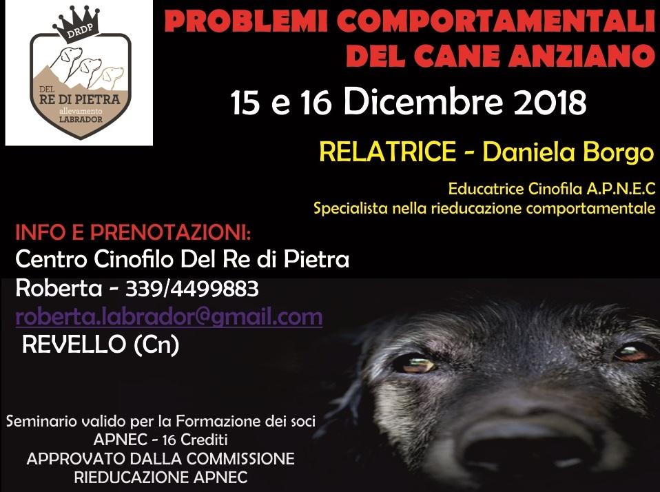 SEMINARIO A.P.N.E.C DEL 15 E 16 DICEMBRE 2018